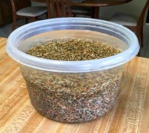 rye grain soak in water sourdough bread